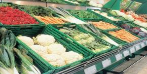 Vietnam to resume vegetable exports to EU