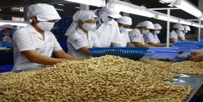 US carries great potential for Vietnam exporters