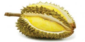 DURIAN- SMELLY BUT INCREDIBLY NUTRITIOUS