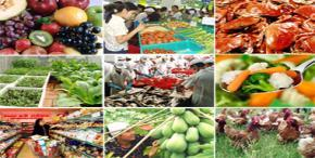 Exports of agricultural, forestry and fishery got acceleraed