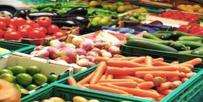 Fruit and vegetable exports drive healthy sector growth