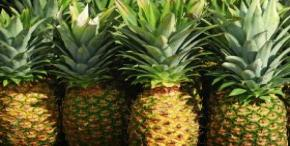 Asian expansion propels global pineapple market